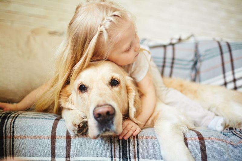 Köpeklerle İyi Anlaşmak
