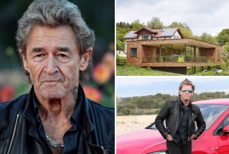 Peter Maffay – 1 Million Dollar