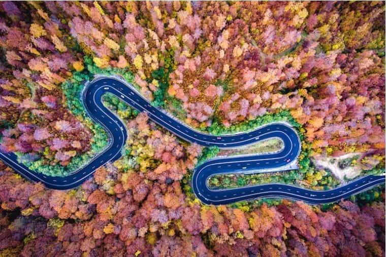 고속도로에 찾아온 가을