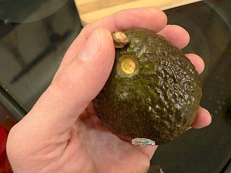 Checking Ripeness Of Avocados