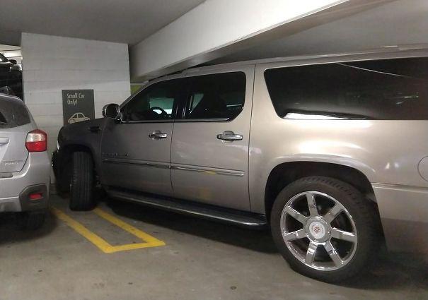 제발 주차장 매너는 지켜주세요!