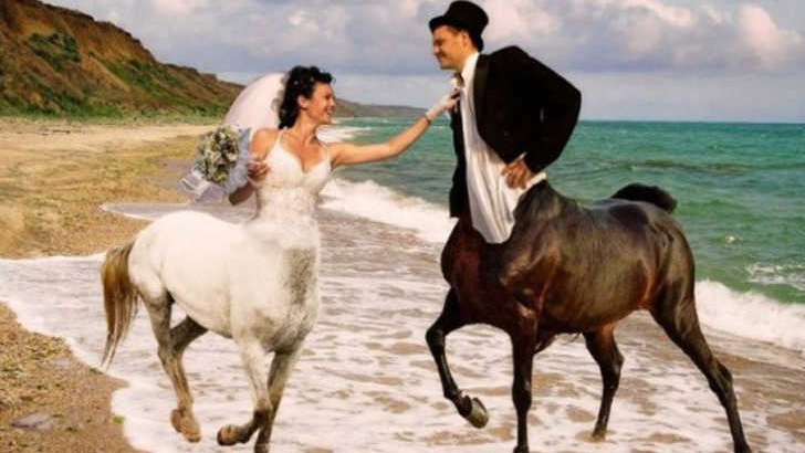 The Wedding Of Centaurs