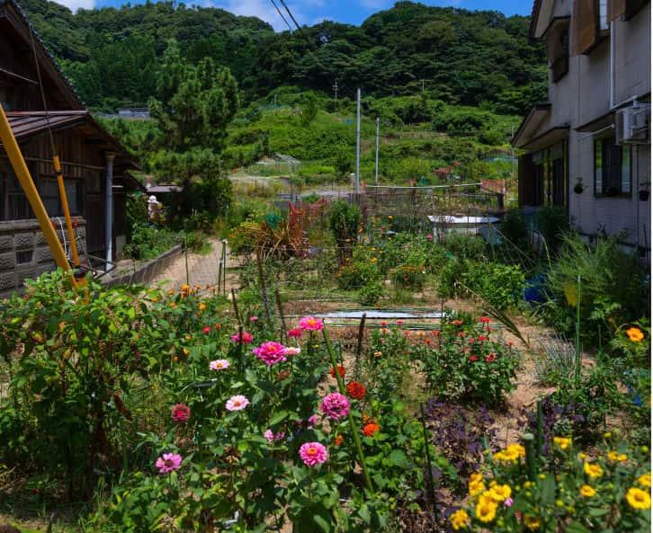 Plan Your Garden Carefully