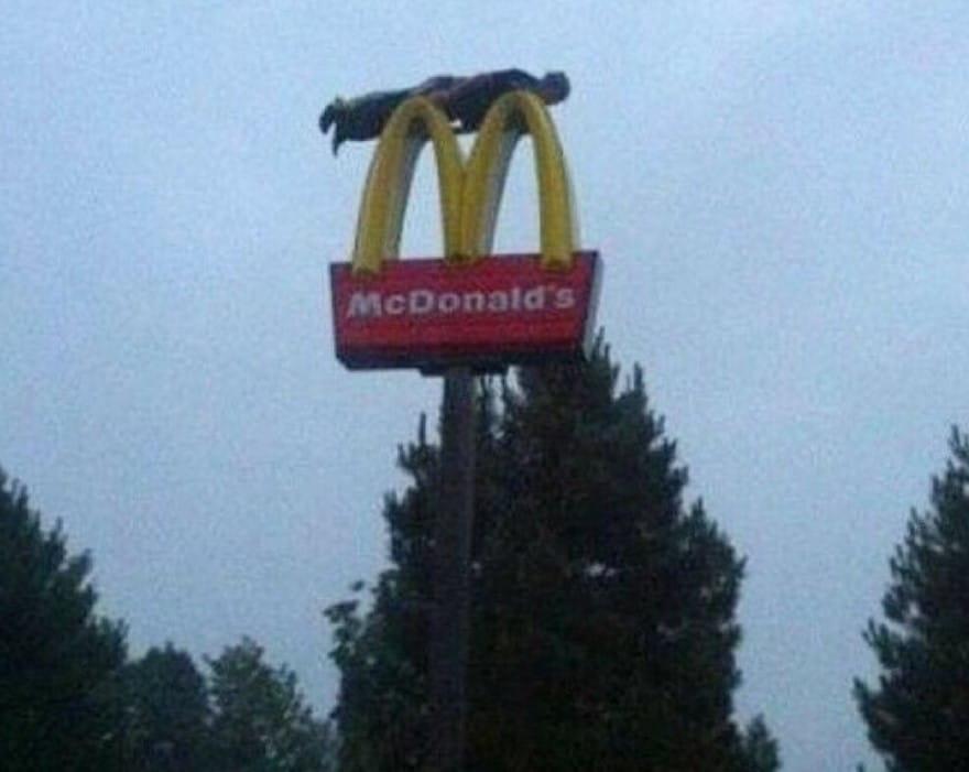 맥도날드 간판위에서 플랭킹을 하는 소년을 본 적 있나요