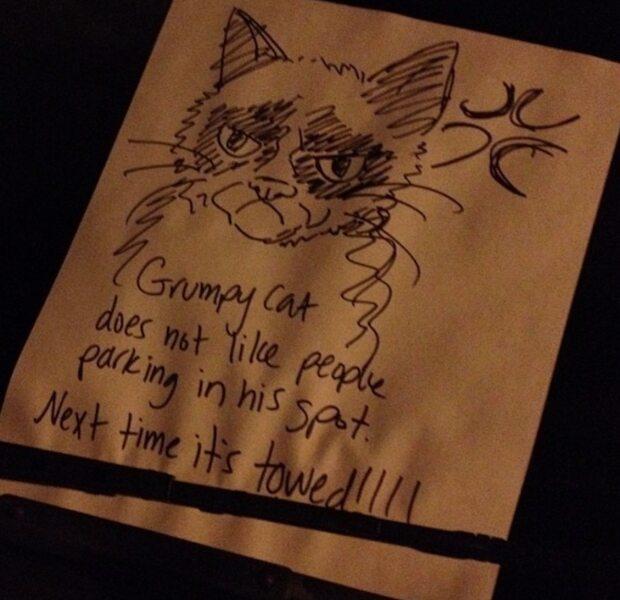 Le Chat En Colère