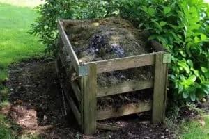 L'avantage Du Compost