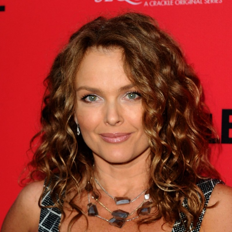 Dina Meyer Today