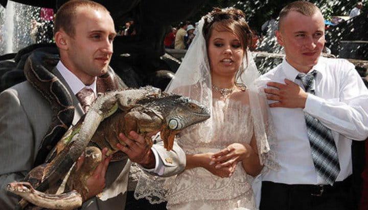 A Reptilian Wedding