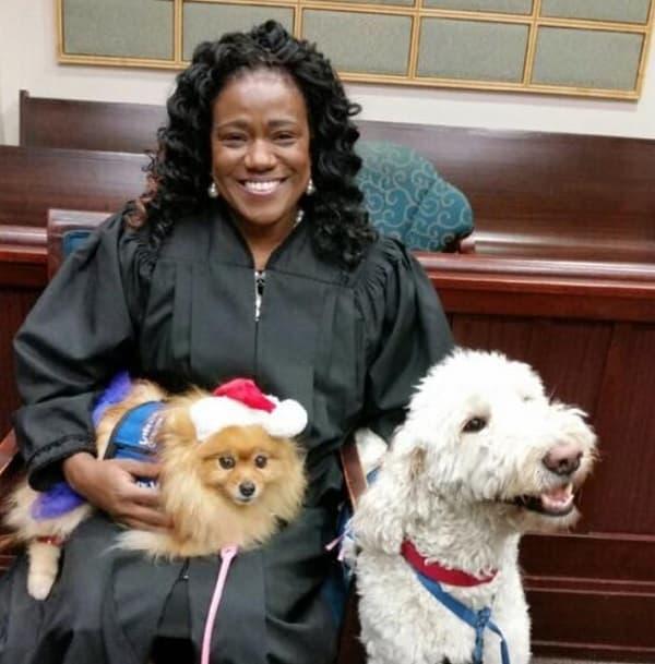 Trabalhando Com O Juiz