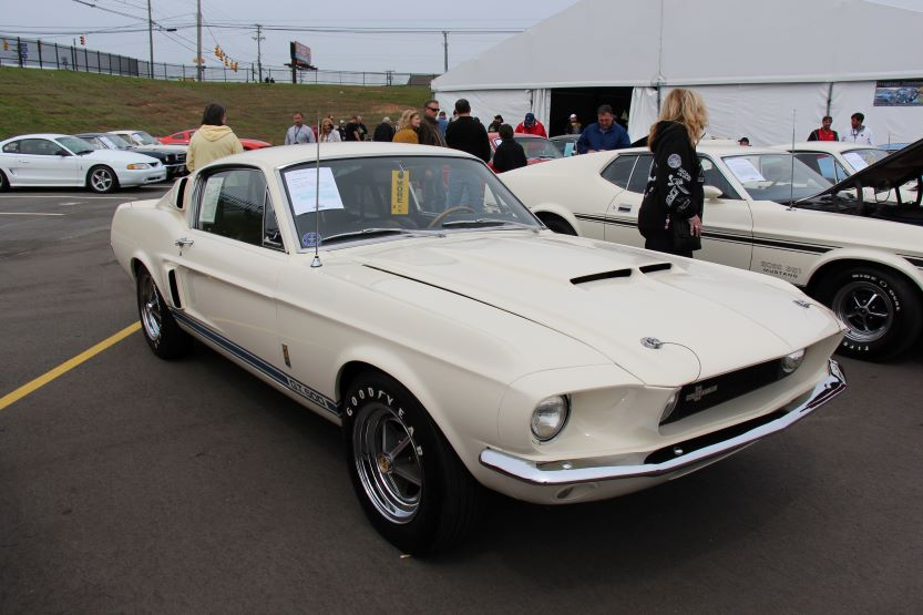 1971 Shelby GT500