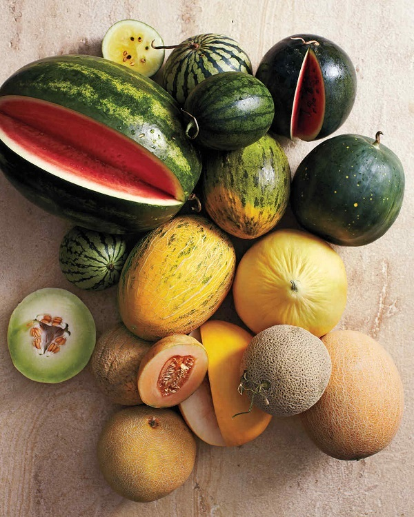Angurie E Meloni