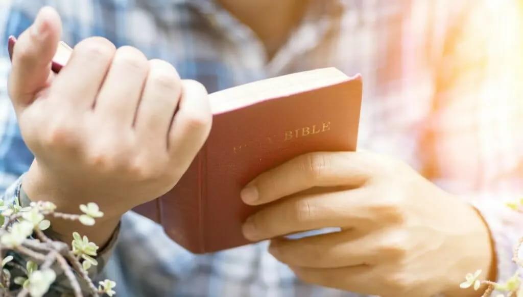 """A """"Bíblia Do Marido Da Coruja"""""""