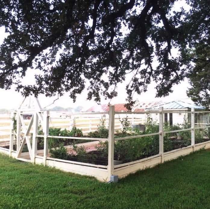 The Ideal Garden