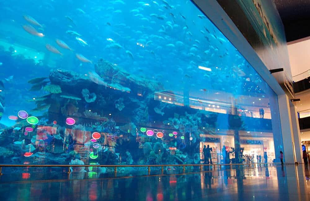 A Leak In A Dubai Aquarium