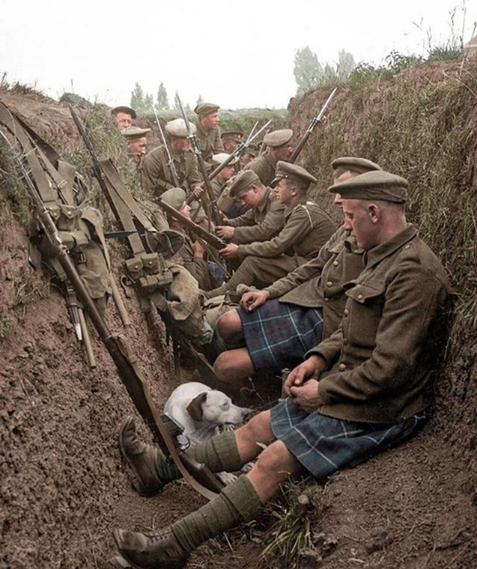 The Seaforth Highlanders With A Dog In Their French Trench
