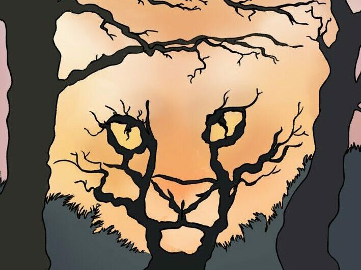 Forest Or Feline