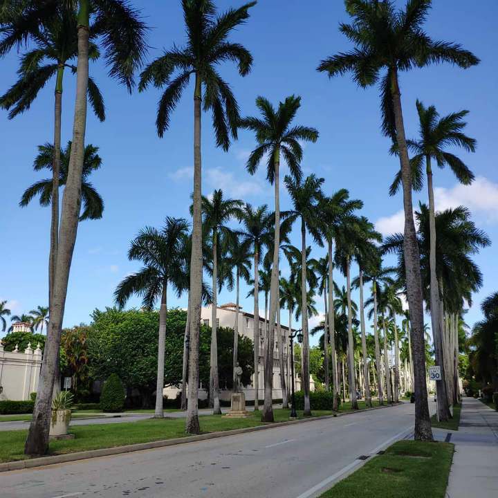 Honorable Mention Palm Beach, Florida (Average Household Income $268,695)