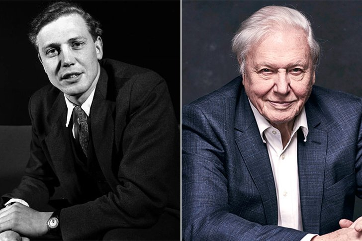 David Attenborough – 94 Years Old