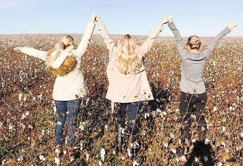 Living In High Cotton