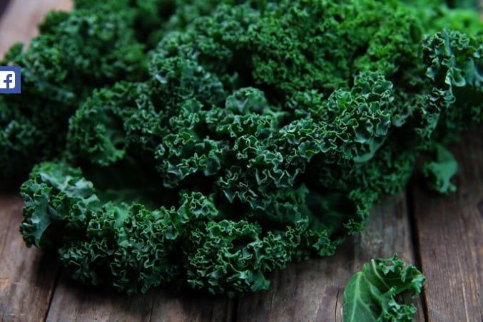 El Kale
