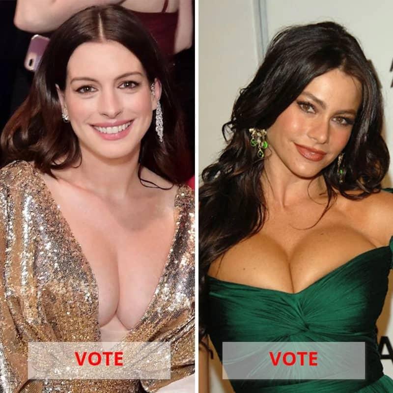 Anne Hathaway Vs. Sofia Vergara