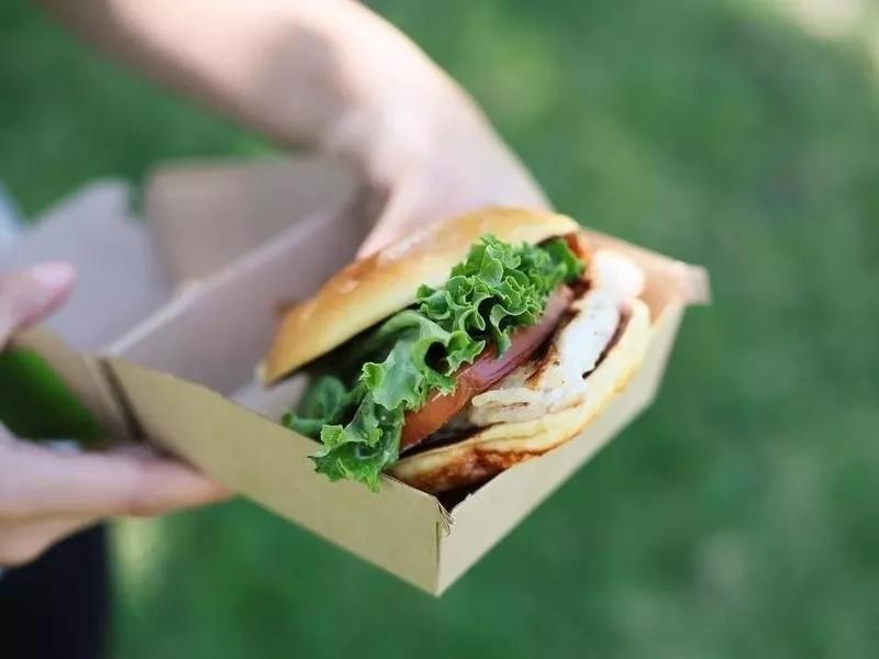 Opinión Del Sándwich De Pollo Plancha Artesano