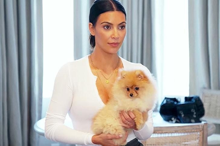 Kim Kardashian – Pomeranian