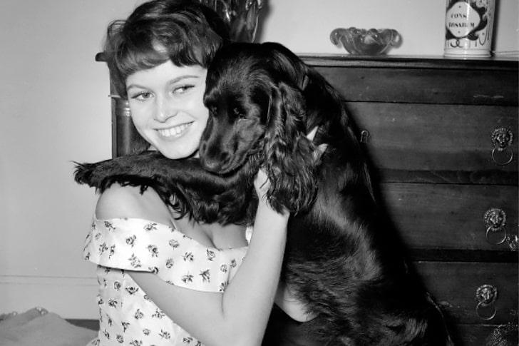 Brigitte Bardot – Cocker Spaniel