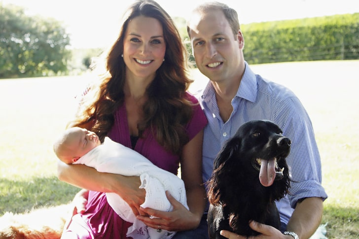 Prince William And Kate Middleton – English Cocker Spaniel