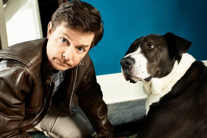 Michael J. Fox – Great Dane Mix