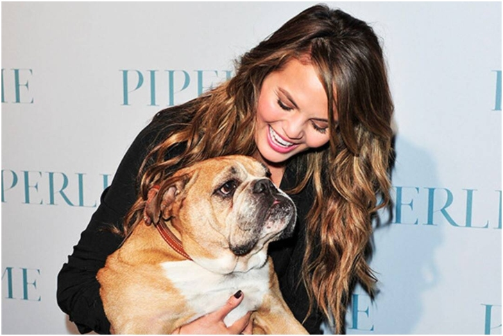 Chrissy Teigen – Bulldog