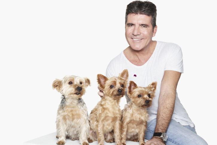 Simon Cowell – Yorkshire Terriers