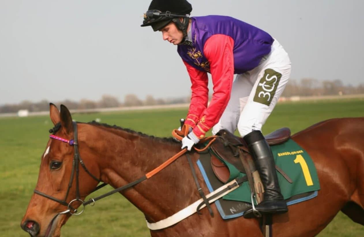 Yarış Atı Takımı