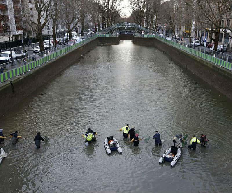 Kanallar Şimdi Ne Durumda