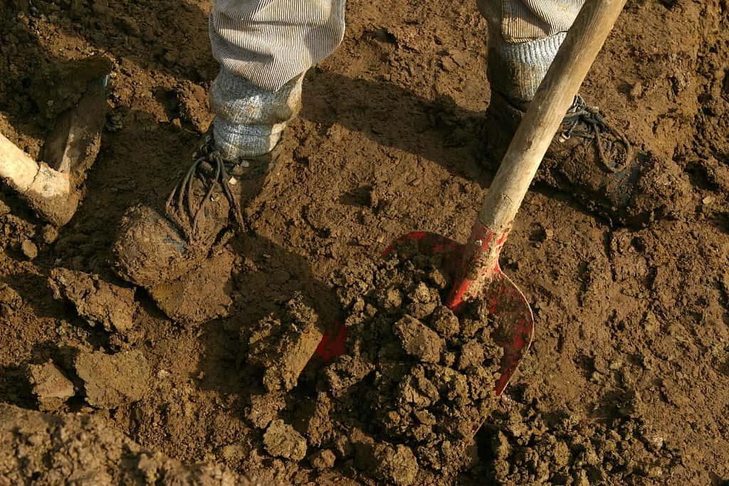 DEU, Germany, Dortmund, Archaeology. Here: Excavating Works