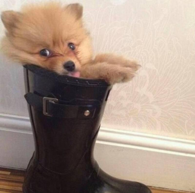 Trying On Mom's Boots